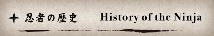 History of the Ninja