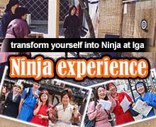 Ninja experience