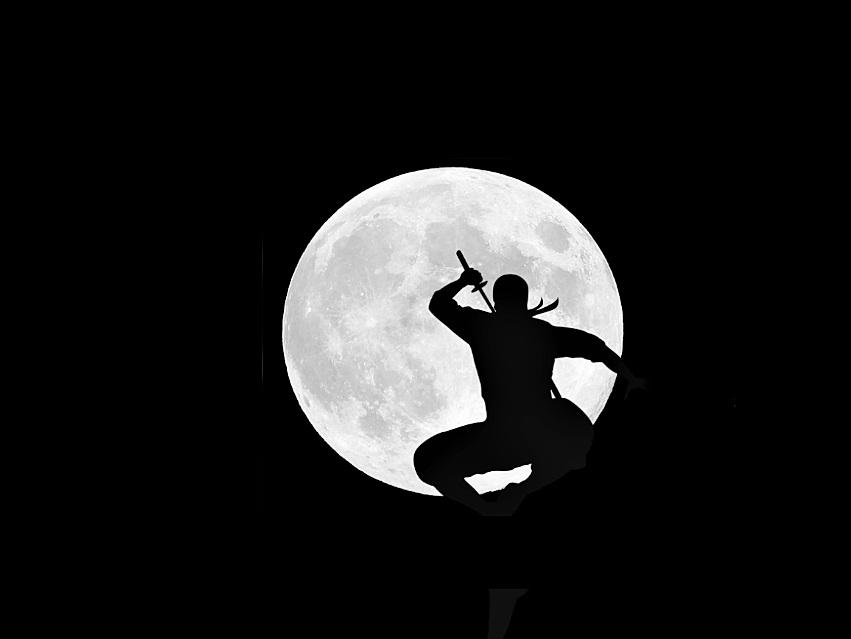 忍者と満月